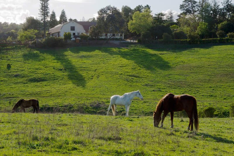 Los Altos Hills, California