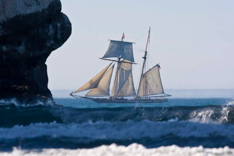Lynx Schooner In Morro Bay