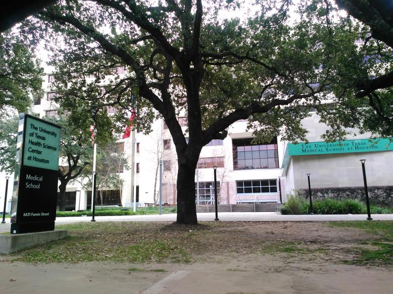 The University Of Texas Health Science Center At Houston