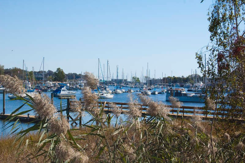 Milford Harbor