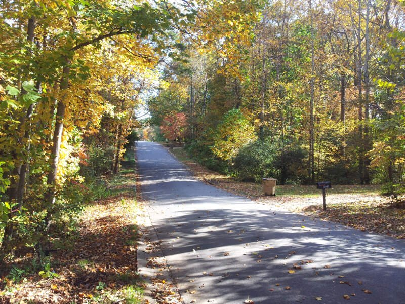 Fall In Kings Ridge Estates In Woodstock Ga