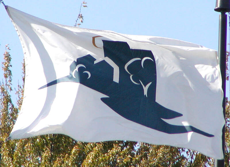 Bloomington Flag