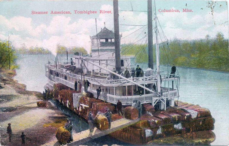 Postcard Of Steamer American On Tombigbee River At Columbusc Mississippi