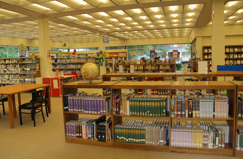 Person Public Library Reading Room
