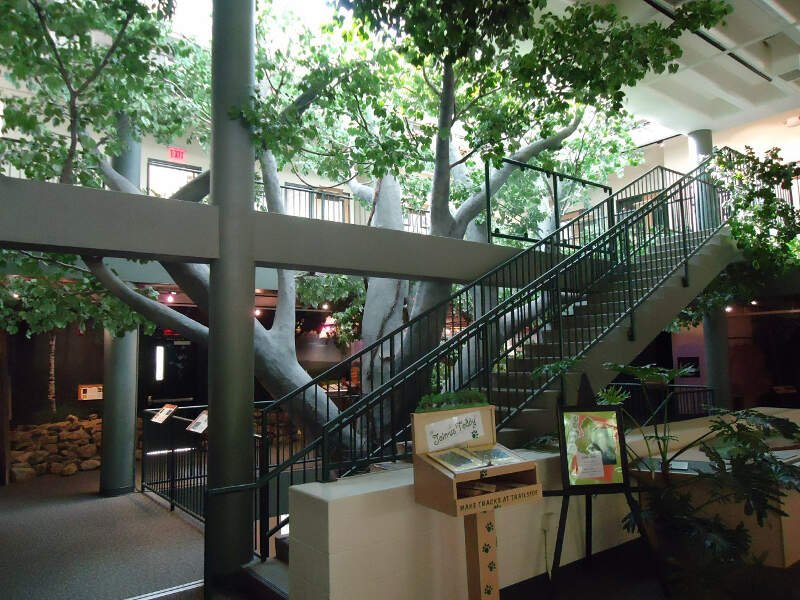 Trailside Nature Science Center Watchung Nj Interior View