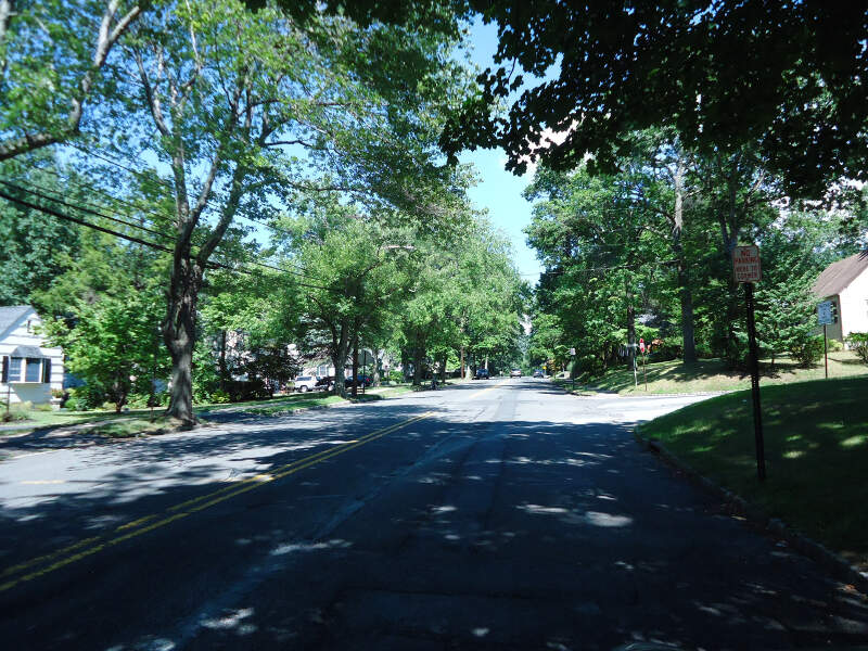 New Providence Nj Leafy Street On A Summer Day