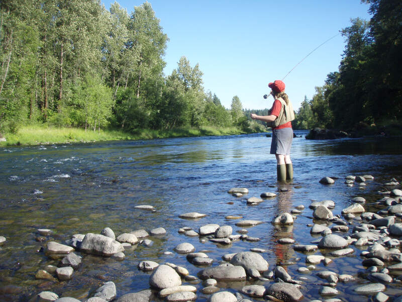 Fly Fishing On The South Santiam