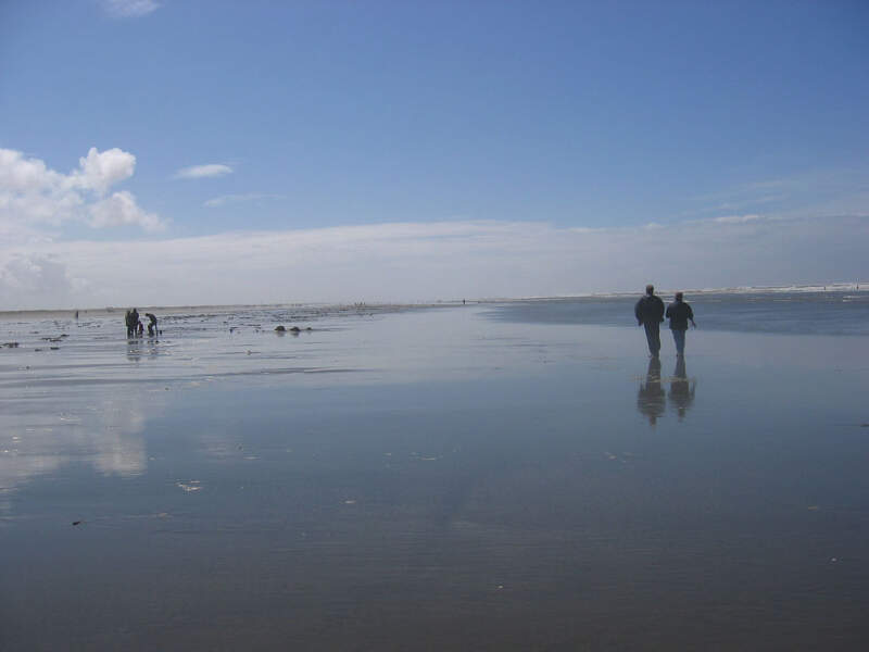 Ocean Shores Clam Digging