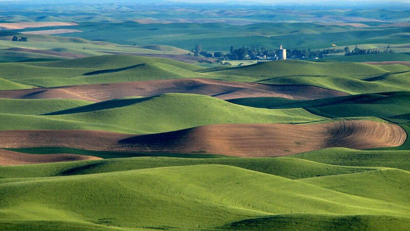 Palouse Hills Northeast Of Walla Walla