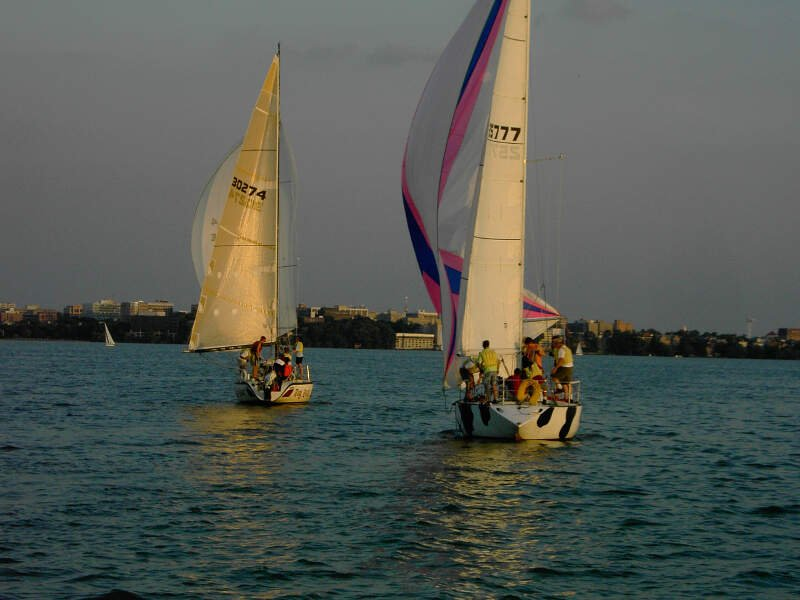 Sailboats On Lake Mendota